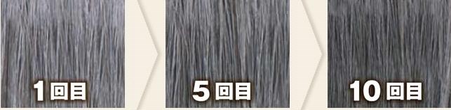 ブラック(利尻カラーシャンプーで染めた髪色見本)